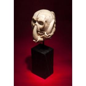 Антикварный череп Oracle, необычные старинные подарки
