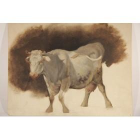 """Старинный академический рисунок """"Корова"""",XIX век"""