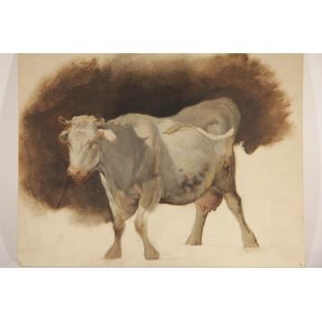 Старинный академический рисунок Корова