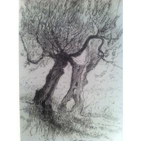 Антикварный Рисунок Италии Пастель художника Барри Бриско (Barry Briscoe)