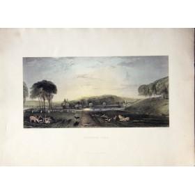 Романтичный вид английского парка Петрос на английской гравюре 19 века в подарок