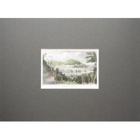 Пейзаж города Торки графство Девоншир в английской гравюре 19 века