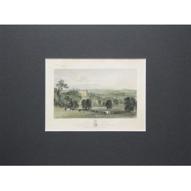 Английская антикварная гравюра 19 века с изображением Park Hatch, графство Сюррей.