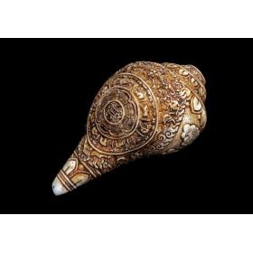 Ритуальная раковина Дунгкар