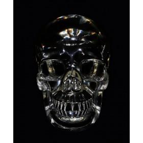 Ритуальный череп Z41U