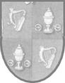 Клейма и пробы, Антикварное Дублинское серебро